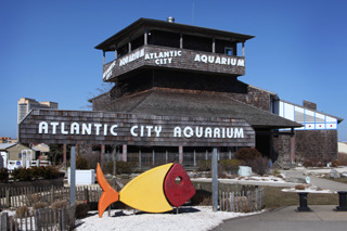 Atlantic City Aquarium